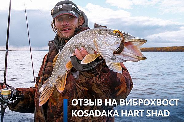 форумы рыбаков по отношению блеснах