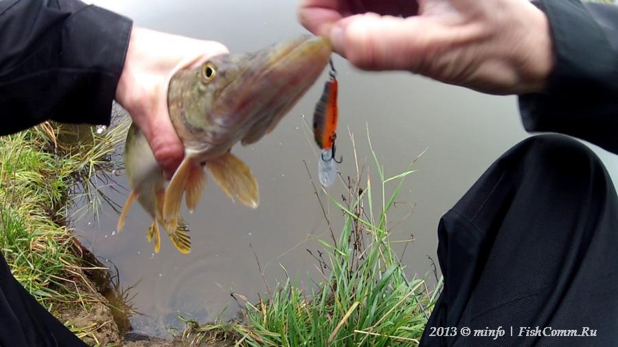 рупасовский пруд рыбалка