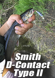 Обзор: Обзор Smith D-Contact  Type II Живая Легенда!!!