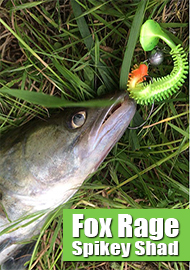 Обзор: Обзор Fox Rage Spikey Shad – фурор!