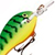 Воблер Rapala Mini Fat Rap MFR03 (4г) FT