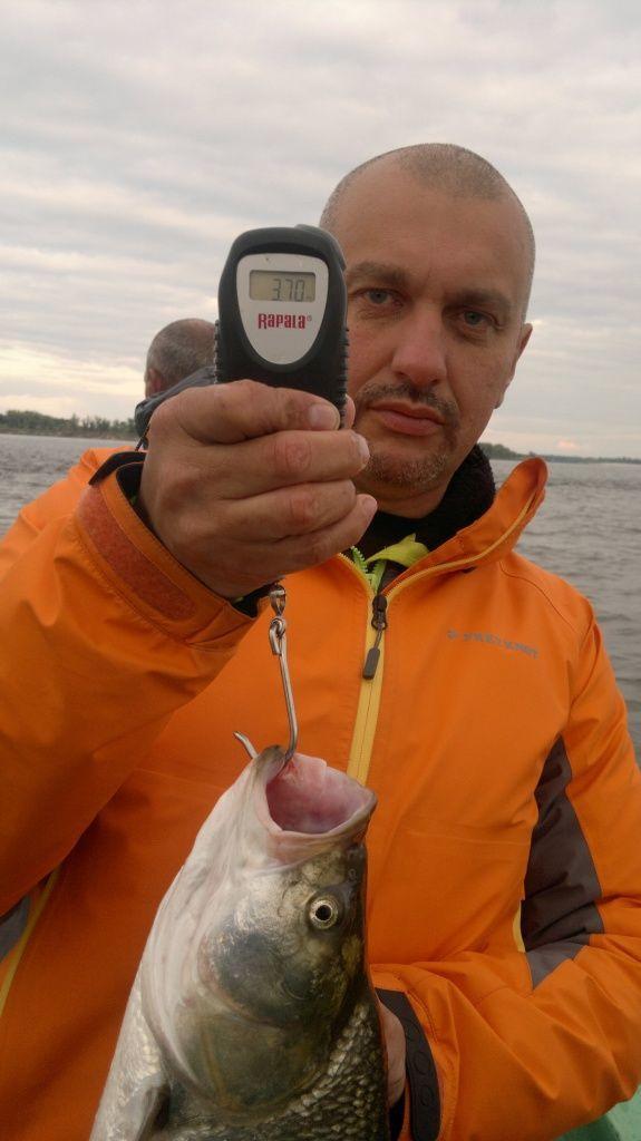 платная рыбалка лосиный остров-отзывы