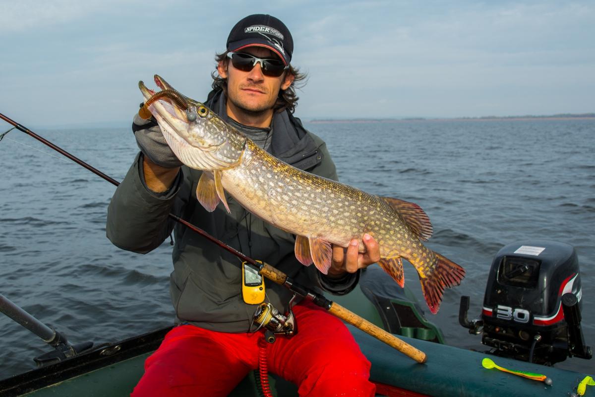 платная рыбалка на спиннинг в белгородской области
