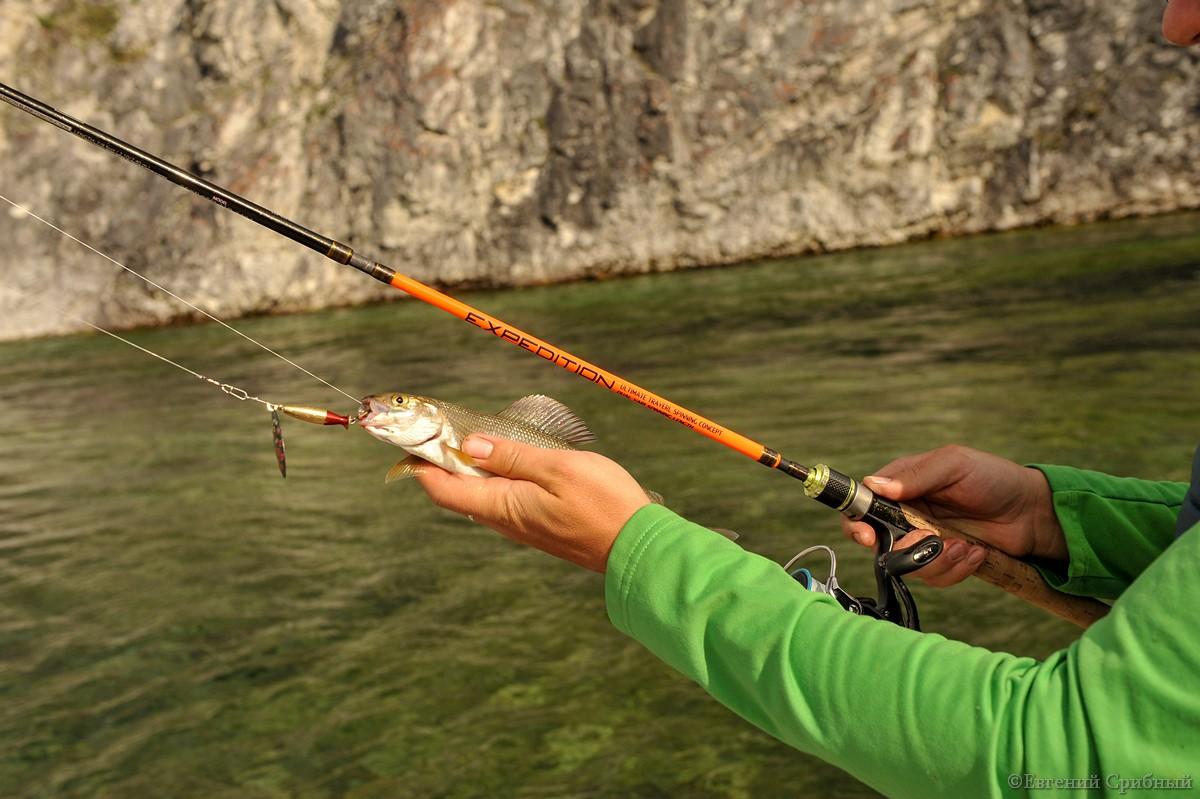 рыбалка в кемерово уловистые места